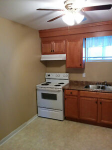 Two Bedroom Apartment Near Village Mall
