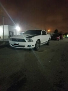 2010 V6 4.0L Ford Mustang SOHC Coupe no major issues