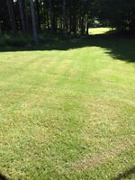 Lawn cutting and garden care