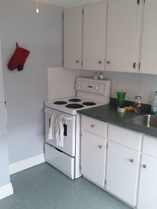 AMAZING ONE OF A KIND 1 BEDROOM APARTMENT FOR RENT IN THOROLD