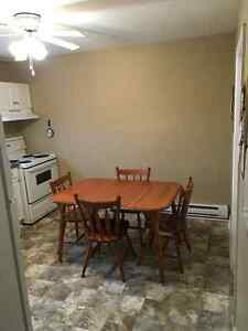 2 Bedroom Basement Apartment between Avalon Mall and MUN St. John's Newfoundland image 2