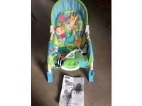 Fisher Price newborn to toddler chair
