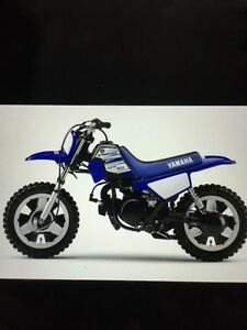 WANTED  PW50
