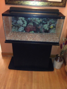 last chance- Hagen 30 gallon fish tank and accessories.