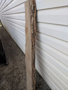 Live edge wood perfect for your project