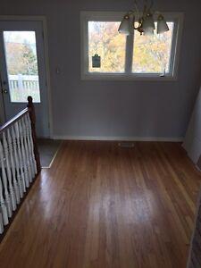 3 bed apt. $1200 utilities included.  St. John's Newfoundland image 3