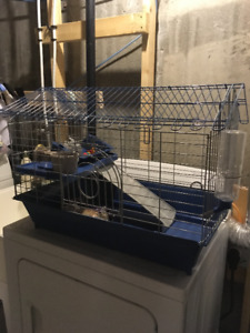 Guinea pig/Skinny pig Cage and Accessories