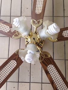 Great Condition Ceiling Fan!