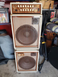 California Blonde II SWR 2 Channel Acoustic Amp