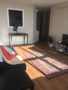 2 Bedroom Apartment for Rent for Summer - May-Aug