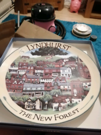 For sale new forest plate only one I got it a wage wood