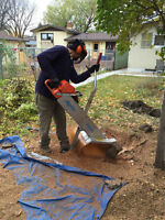 Saskatoon STUMP Grinding 20% senior discount!!!