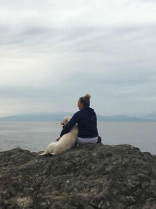 Dog Walker in Salmon Arm and Area
