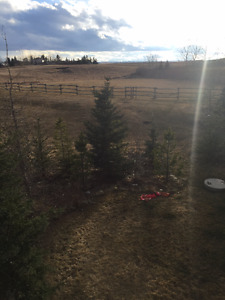 Large Acreage suite by CrossIron Mall