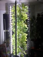 Build a hydroponic family garden tower through our PTS society