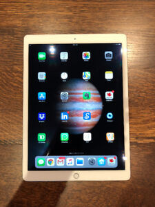 """IPAD PRO 12.9"""" - FULLY LOADED w/CELLULAR - PRIVATE SALE"""