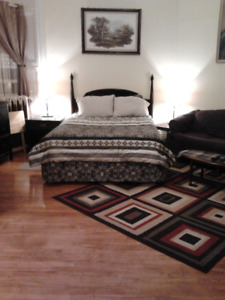 Clean, Quiet, Central, Furnished Room for Rent - Aug 1