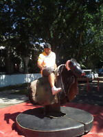 Company parties - Mechanical bull and other rentals
