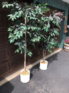 Artificial trees good condition
