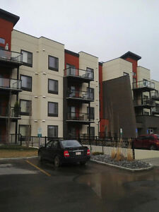 A nice condo in Ambleside for rent
