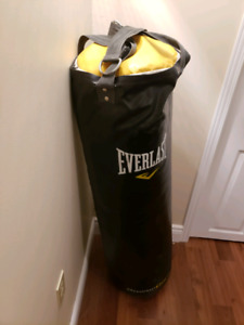 Everlast Boxing Bag