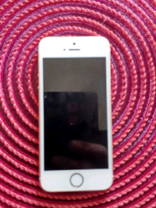 iPhone 5s UNLOCKED with Otterbox