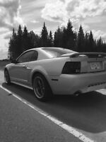 **Supercharged GT**