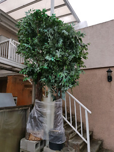 2 artificial fig trees