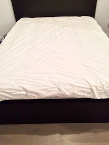 NEW PRICE! TWO-PIECE DUVET - ONLY $50!