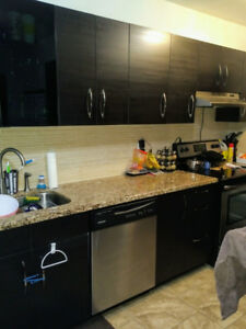 Kitchen cabinets and counters for sale