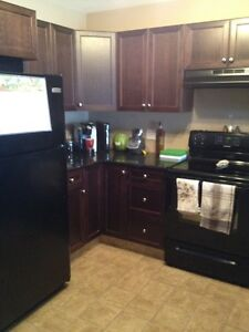Beautiful 2 Bedroom Condo Available June 1st!