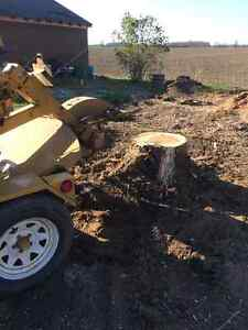 Affordable stump removal London Ontario image 2