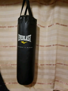 Everlast Punching Bag with gloves