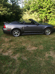 2004 Ford Mustang Convertible 40 th anniversary model