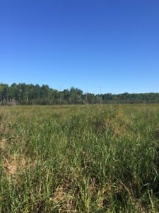 160 Acre property for sale