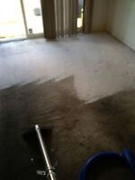 strean carpet cleaning