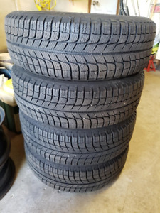 Michelin Xice Tires