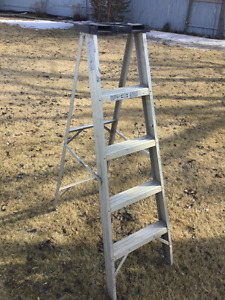 Step Ladder and Extension Ladder