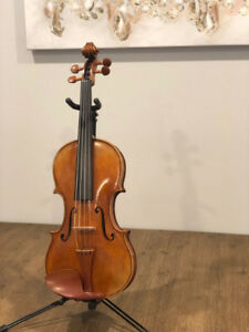 Intermediate - Professional Violin