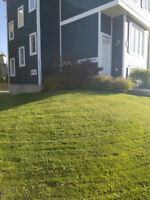 Lawn Mowing Chestermere