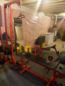 Complete home gym London Ontario image 5