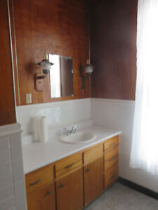 Professionally renovated 1 bedroom apartment
