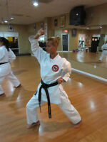 Intro Karate Classes 4 Adults! Reg. NOW!