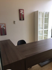 Professional Office Space Available