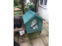 Outside dog hut