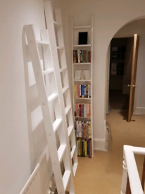 Free ladder bookcases