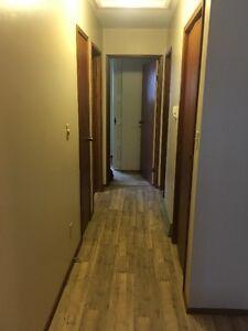 3 bedroom house in Vermilion NO PETS