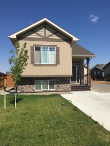 Spacious & High Quality One Bed Suite, West Leth. Avail. now