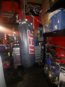 Ufc heavy bag with ceiling attachment