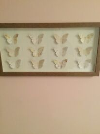 NEXT - 3D Butterfly Picture
